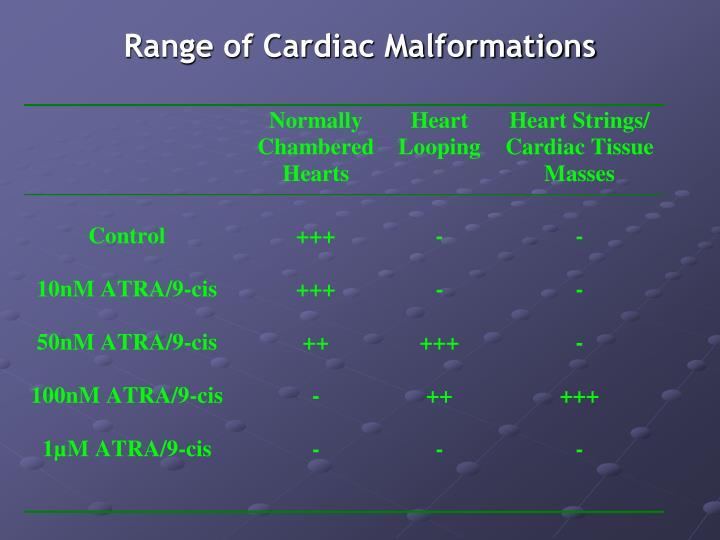 Range of Cardiac Malformations