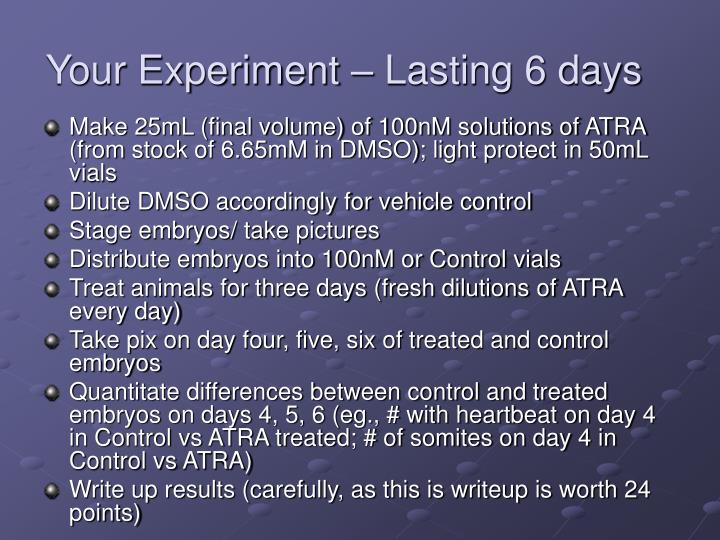 Your Experiment – Lasting 6 days