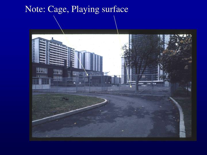 Note: Cage, Playing surface