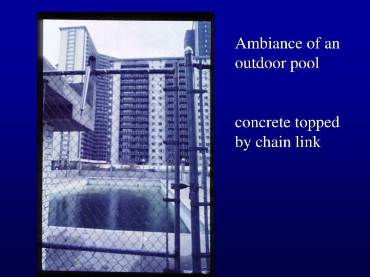 Ambiance of an outdoor pool