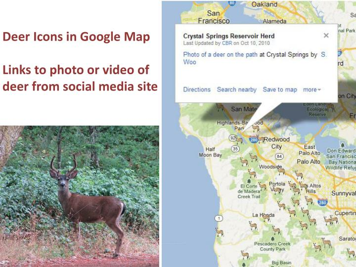 Deer icons in google map links to photo or video of deer from social media site
