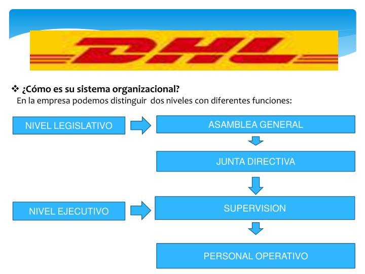 ¿Cómo es su sistema organizacional?