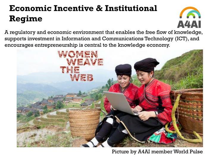 Economic Incentive & Institutional Regime