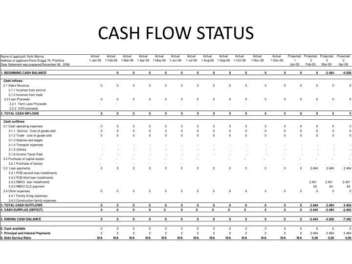 CASH FLOW STATUS