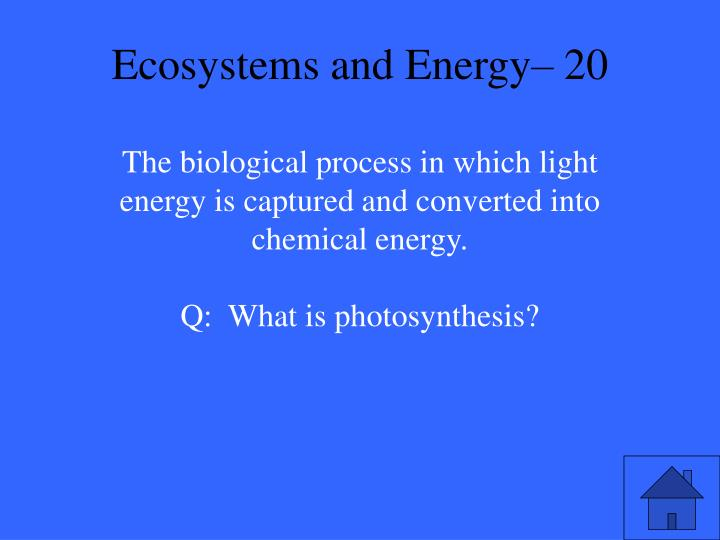 Ecosystems and Energy– 20