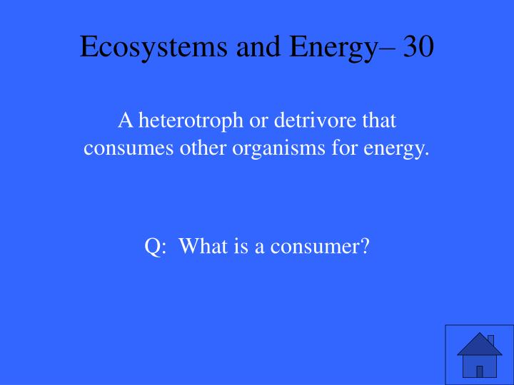 Ecosystems and Energy– 30