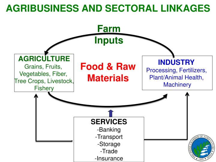 AGRIBUSINESS AND SECTORAL LINKAGES