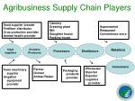 agribusiness supply chain players