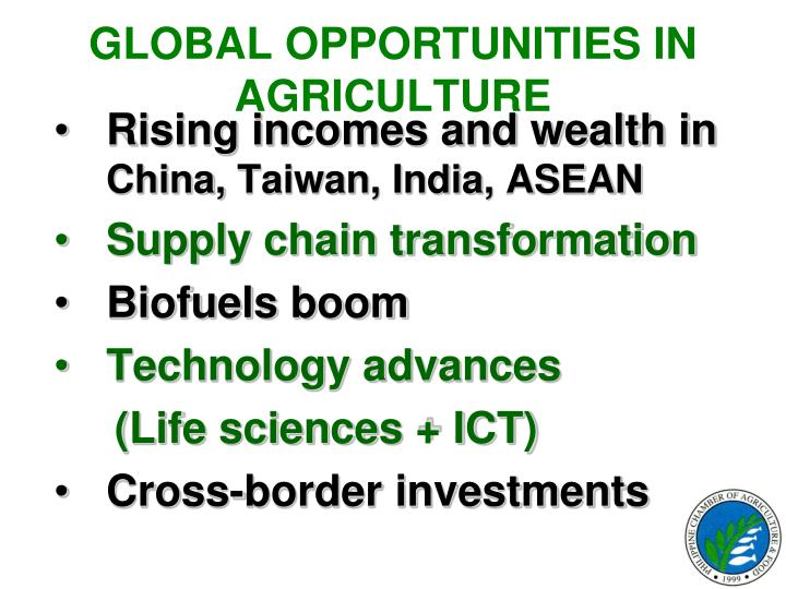 GLOBAL OPPORTUNITIES IN