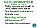 global opportunities in agriculture