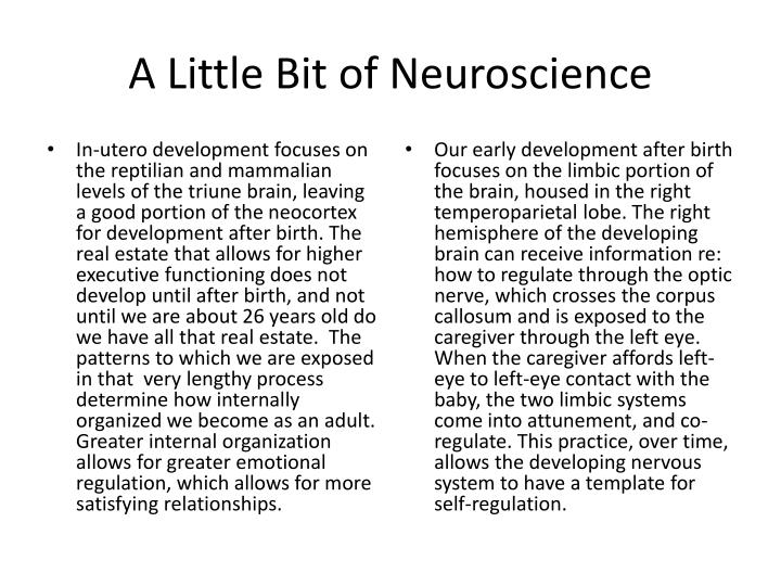 A Little Bit of Neuroscience