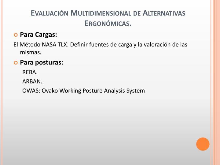 Evaluación Multidimensional de Alternativas Ergonómicas.