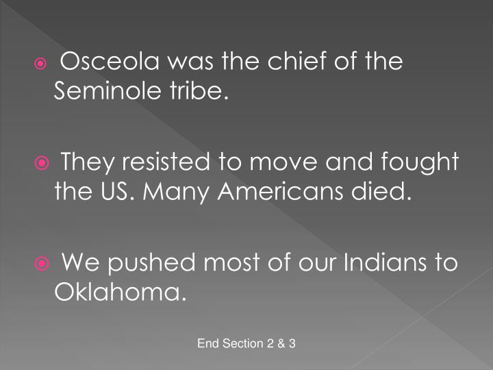 Osceola was the chief of the Seminole tribe.