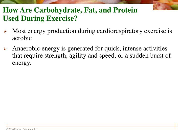 How Are Carbohydrate, Fat, and Protein Used During Exercise?