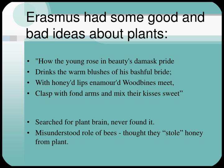 Erasmus had some good and bad ideas about plants