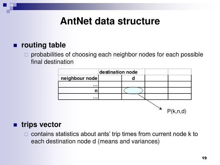 AntNet data structure