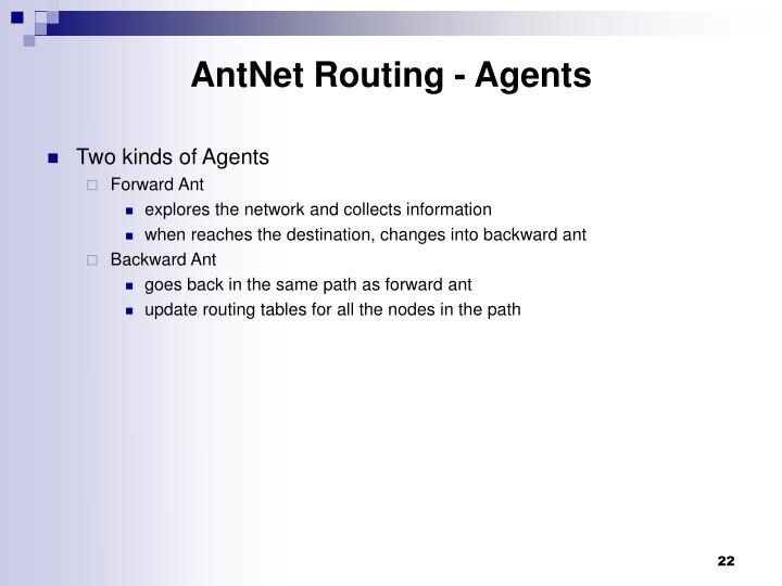 AntNet Routing - Agents
