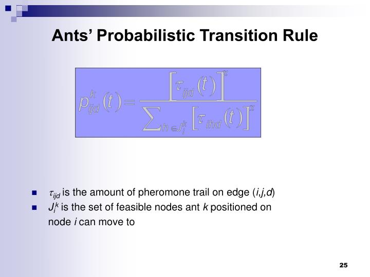 Ants' Probabilistic Transition Rule