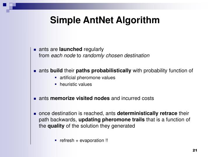 Simple AntNet Algorithm