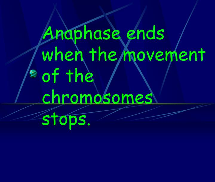 Anaphase ends when the movement of the chromosomes stops.