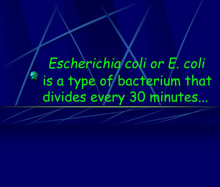 Escherichia coli or E. coli