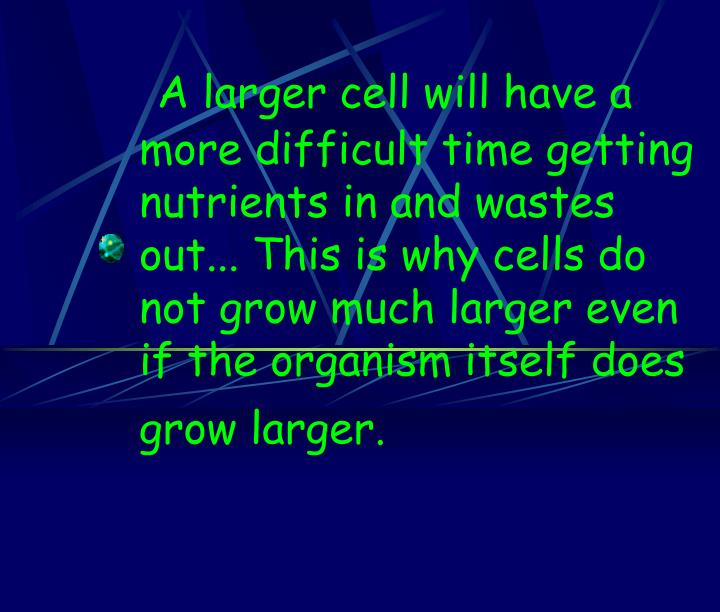 A larger cell will have a more difficult time getting nutrients in and wastes out... This is why cells do not grow much larger even if the organism itself does grow larger.
