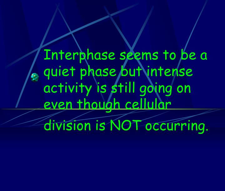 Interphase seems to be a quiet phase but intense activity is still going on even though cellular division is NOT occurring.