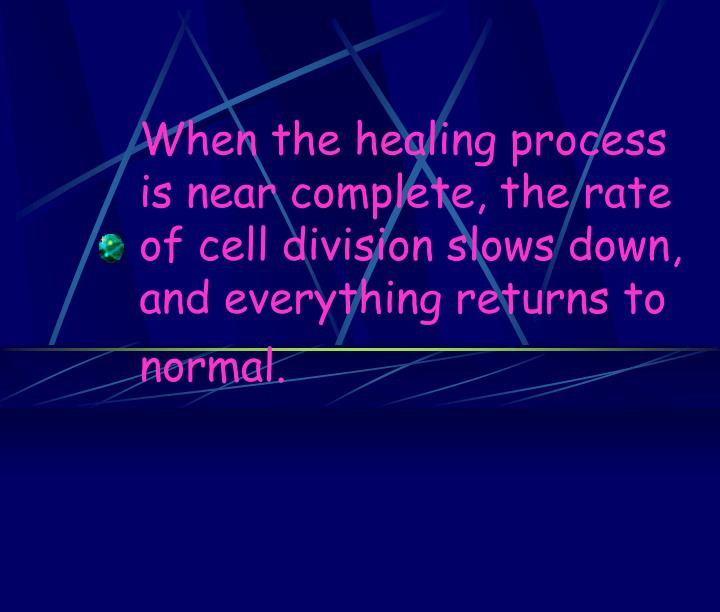 When the healing process is near complete, the rate of cell division slows down, and everything returns to normal.