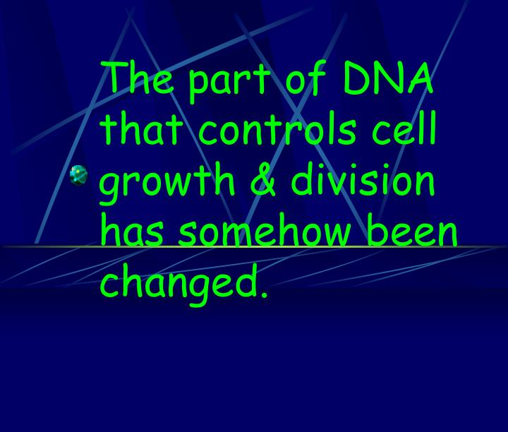 The part of DNA that controls cell growth & division has somehow been changed.