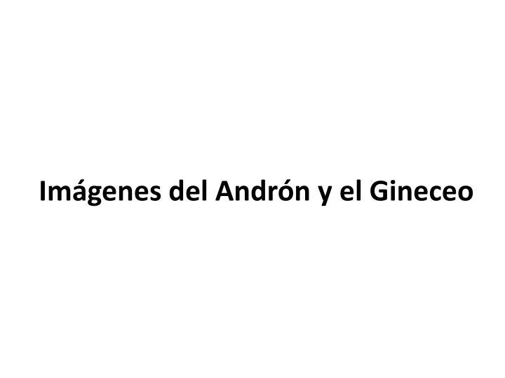Imágenes del Andrón y el Gineceo