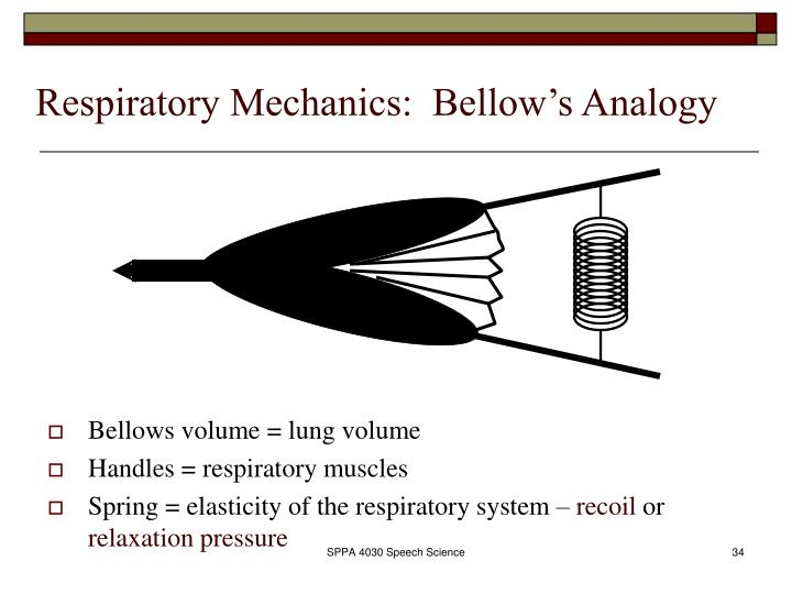 Respiratory Mechanics:  Bellow's Analogy