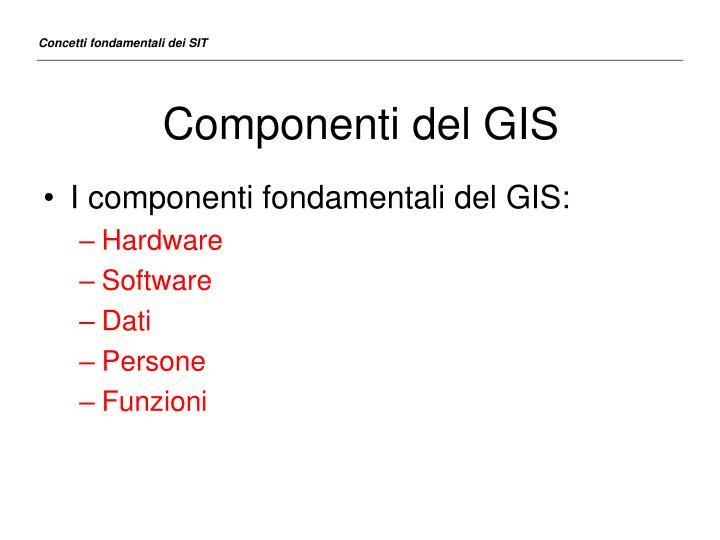 Componenti del GIS