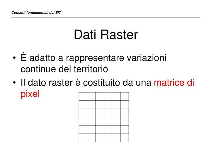 Dati Raster