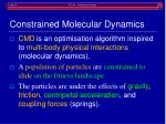 constrained molecular dynamics