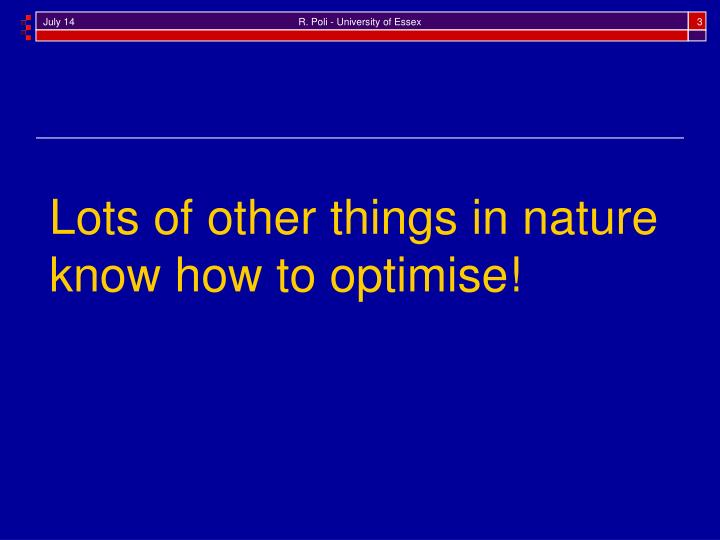 Lots of other things in nature know how to optimise