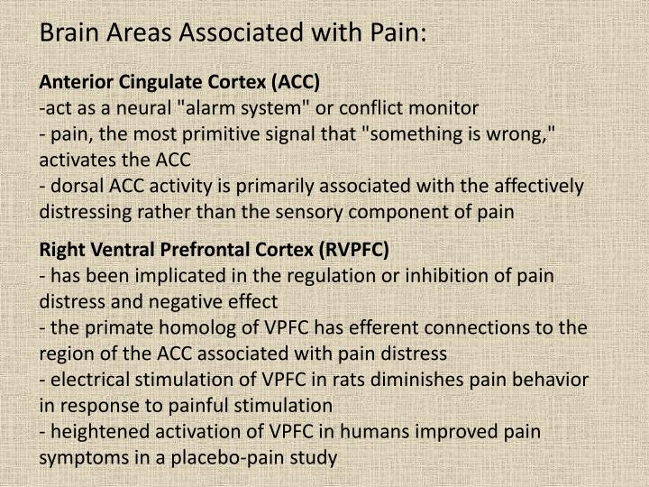 Brain Areas Associated with Pain: