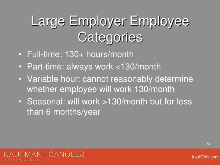 Large Employer Employee Categories