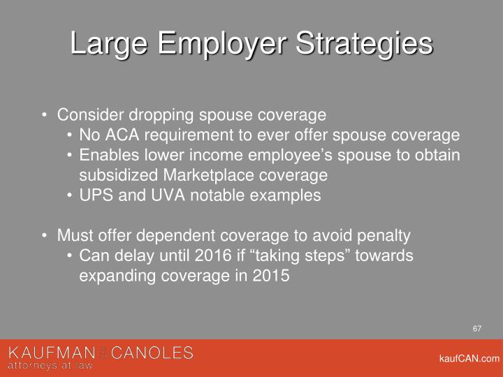 Large Employer Strategies