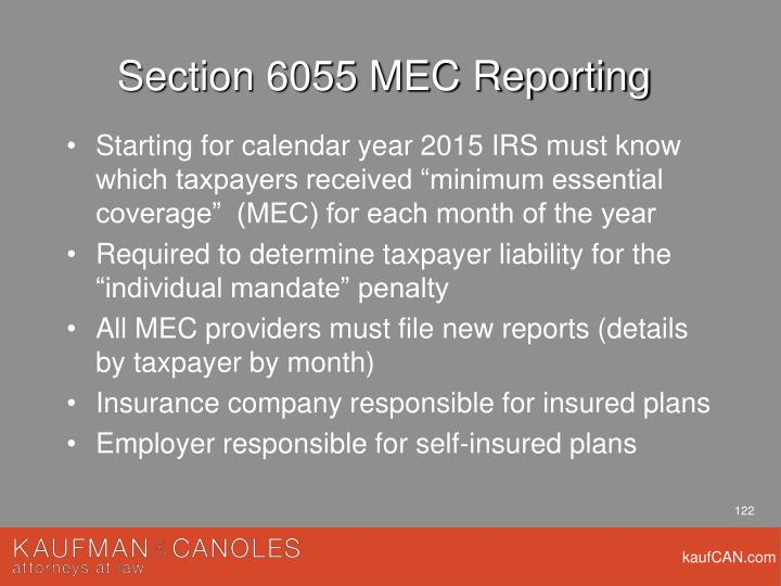 Section 6055 MEC Reporting