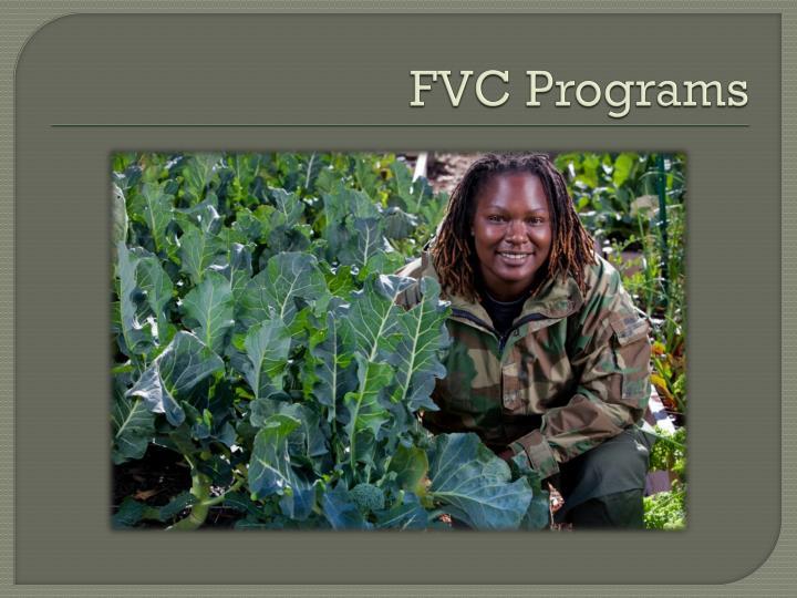 FVC Programs