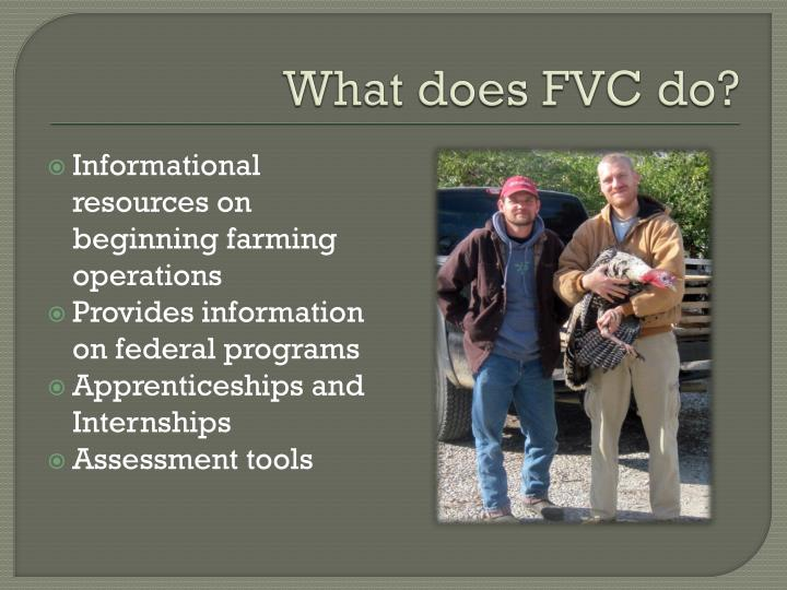 What does FVC do?