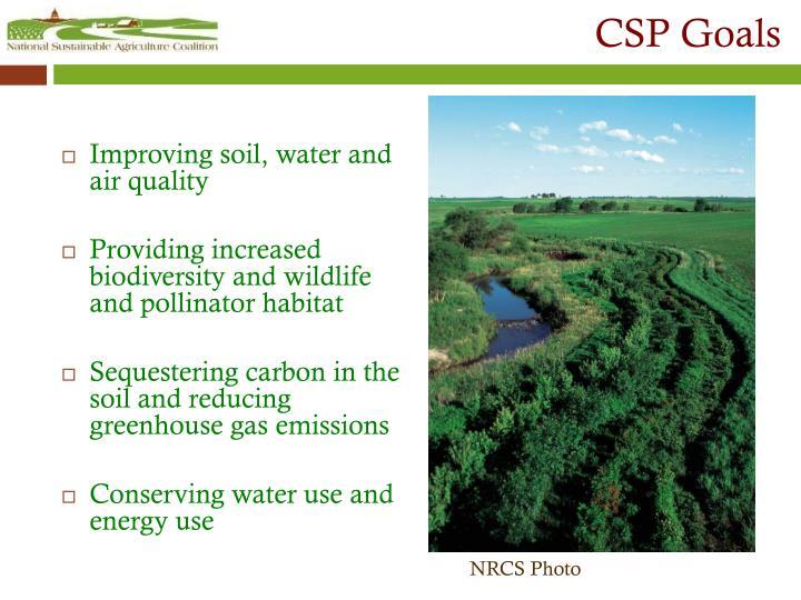 CSP Goals
