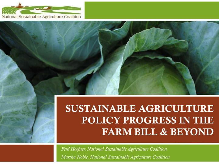 Sustainable agriculture policy progress in the farm bill beyond