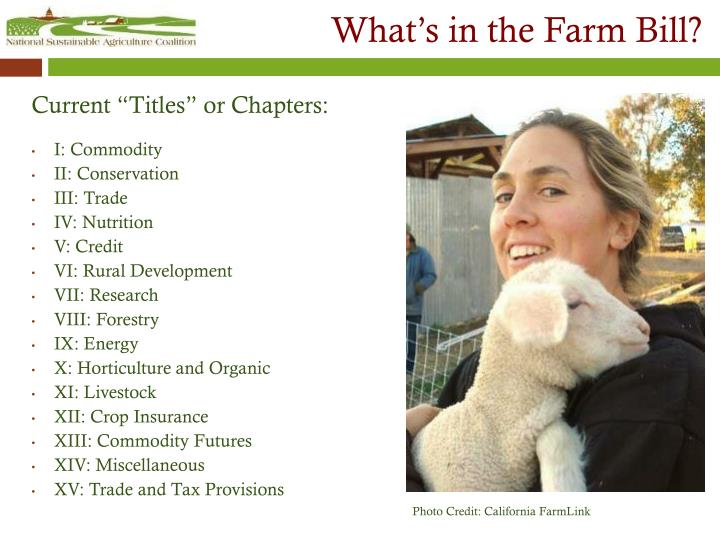 What s in the farm bill