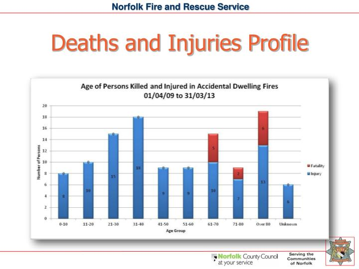 Deaths and Injuries Profile