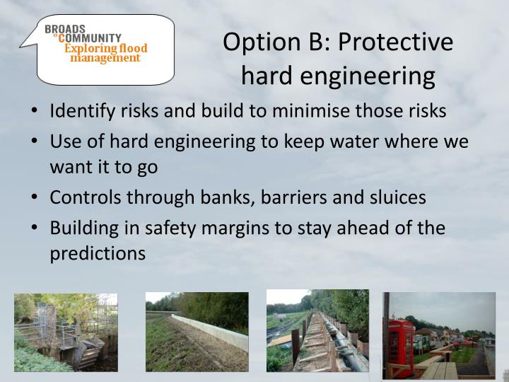 Option B: Protective hard engineering