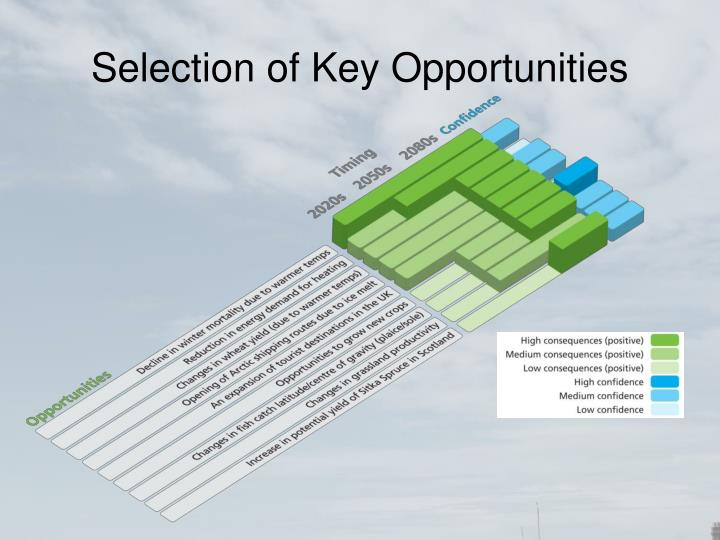 Selection of Key Opportunities