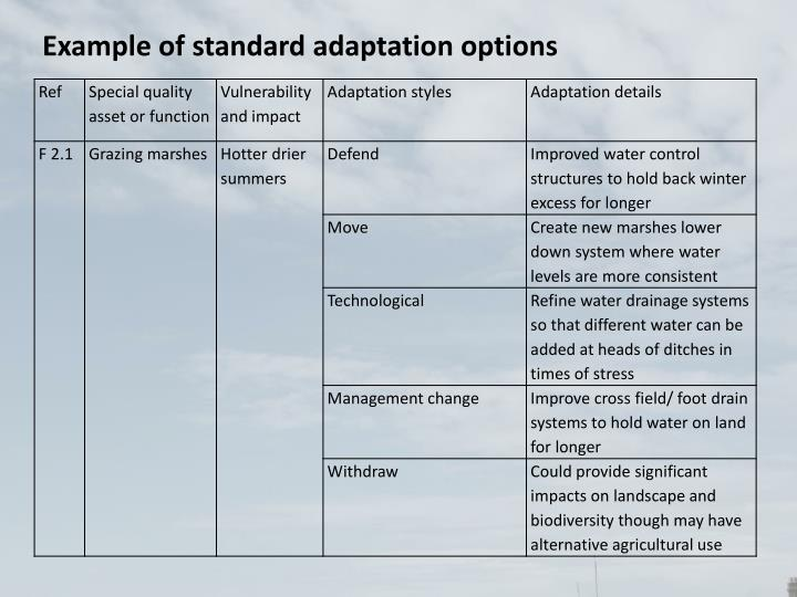 Example of standard adaptation options