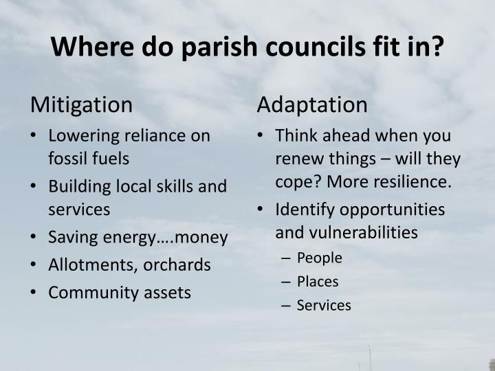 Where do parish councils fit in?