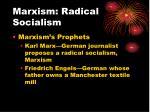 marxism radical socialism